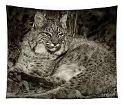 Bobcat In Black And White Tapestry