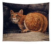Bobcat On Ledge Tapestry