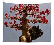 Bonsai Spring Wardrobe Tapestry