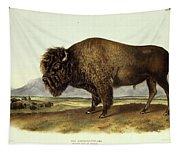 Bos Americanus, American Bison Tapestry