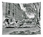 Boston Buggy Tapestry