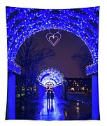 Boston Ma Christopher Columbus Park Trellis Lit Up For Valentine's Day Rainy Night Tapestry