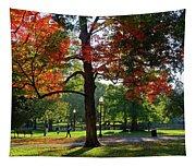 Boston Public Garden Autumn Tree Morning Light Walk In The Park Tapestry