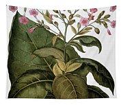 Botany: Tobacco Plant Tapestry