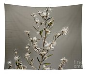 Botswana Wildflower  Tapestry