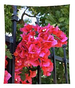 Bougainvillea On Southern Fence Tapestry
