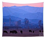 Boulder County Industry Meets Country Tapestry