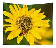 Box Elder Bug On False Sunflower Tapestry
