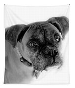 Boxer Dog Tapestry