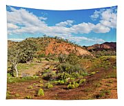 Bracchina Gorge Flinders Ranges South Australia Tapestry