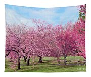 Branch Brook Cherry Blossoms Tapestry