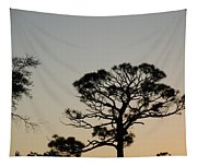 Branches In The Sunset Tapestry