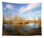 Brazos Bend Winter Bliss Tapestry