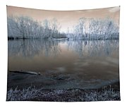 Brazos Bend Winter Fantasy Tapestry