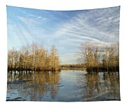Brazos Bend Winter Reflections Tapestry