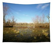 Brazos Bend Winter Wetland Tapestry