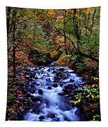 Bridal Veil Creek Tapestry