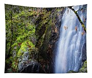 Bridal Veil  Falls 3 Tapestry