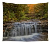 Bridge And Falls Tapestry
