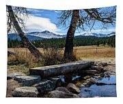 Bridge To Long's Peak Tapestry