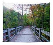 Bridge To Paradise - Wissahickon Valley Tapestry