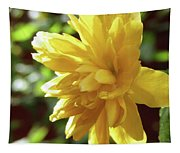 Bright As Yellow Tapestry