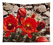 Bright Orange Cactus Blossoms Tapestry