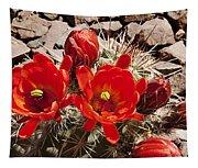 Bright Orange Cactus Blossoms Tapestry