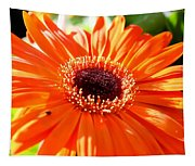 Bright Orange Gerbera  Tapestry