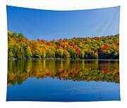 Bright Reflection Tapestry