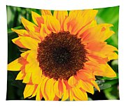Bright Sunflower Tapestry