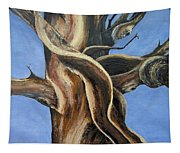 Bristlecone Tree No.4 Tapestry