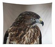 Broad-winged Hawk Tapestry