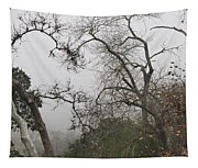 Broken Heart In  Fog Tapestry