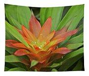 Bromeliad Tapestry