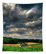 Brooding Sky Tapestry