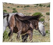 Broomtails Tapestry