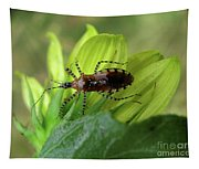 Brown Insect Tapestry