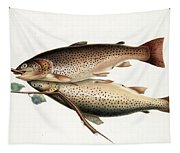 Brown Trout Tapestry