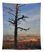 Bryce Canyon Dead Tree Sunset 3 Tapestry