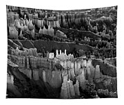 Bryce Canyon In Black And White Tapestry