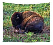 Buffalo In The Badlands Tapestry