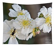 Bugaboo Apple Blossoms Tapestry
