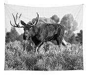 Bull On A Blue Sky Day Black And White Tapestry