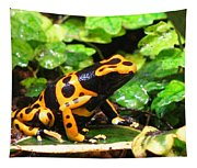 Bumble Bee Poison Frog Tapestry