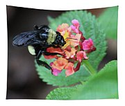 Bumble Bee Square Tapestry