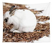 Bunnies Three Tapestry