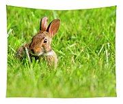 Bunny In Field  Tapestry