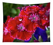Burgandy Red Dianthus Tapestry