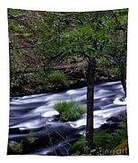Burney Creek Tapestry